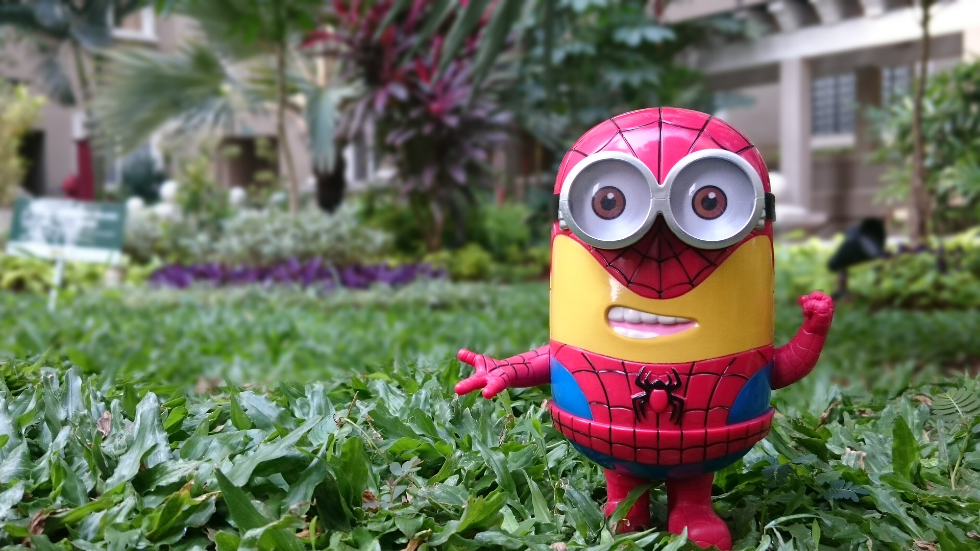 Minion spider man